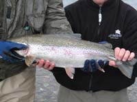 Description: C:\Users\Owner\Documents\Alaska fly Fishing Web Site 2007\images\Tom_and_Grant_hold_fish.jpg